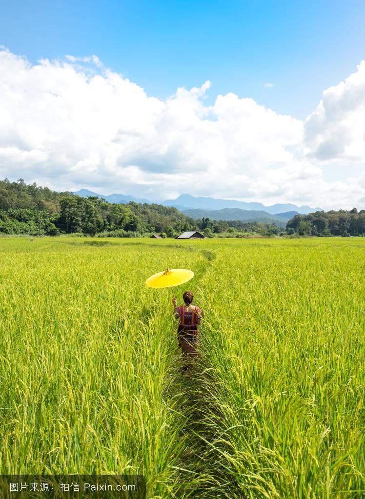 女人射粹b�9�yf_天空,女人,景观,农民,线,自然,收获,粮食,梅华萃,种子,风景,山,美丽