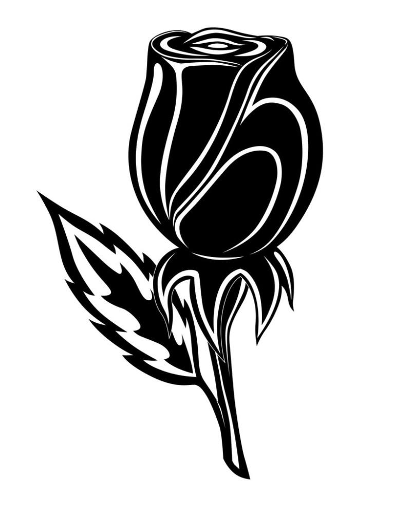 白色,垂直构图,黑色,痕迹,花,花瓣,绘画插图,玫瑰,矢量图,纹身,植物图片