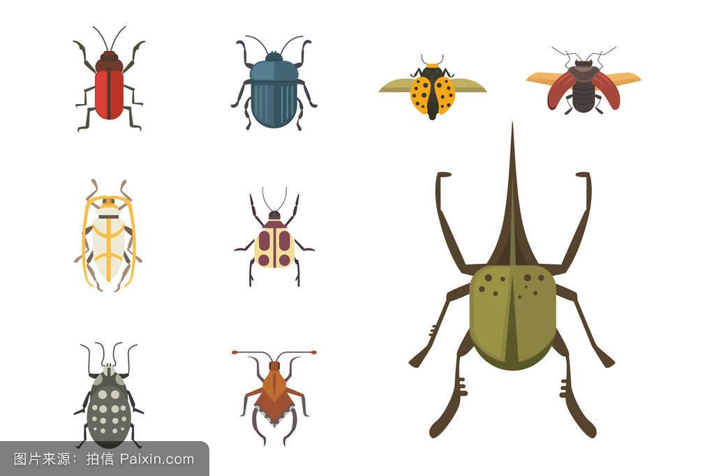 符号, 蚂蚁, _表情大全图片