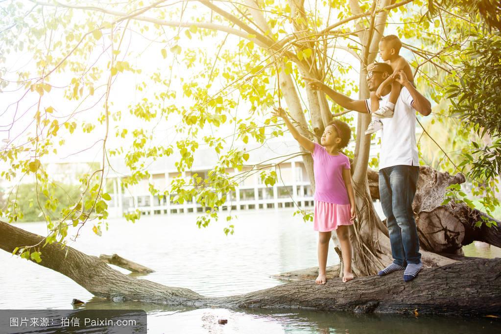 教养,运送,自然,家庭,生活方式,磨尖,童年,树,幸福的,站立,河,看,森林图片
