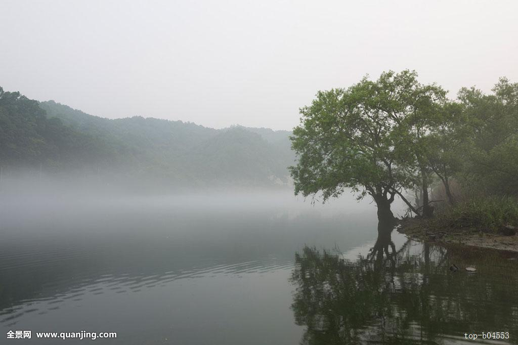 公园,河,大田,韩国图片