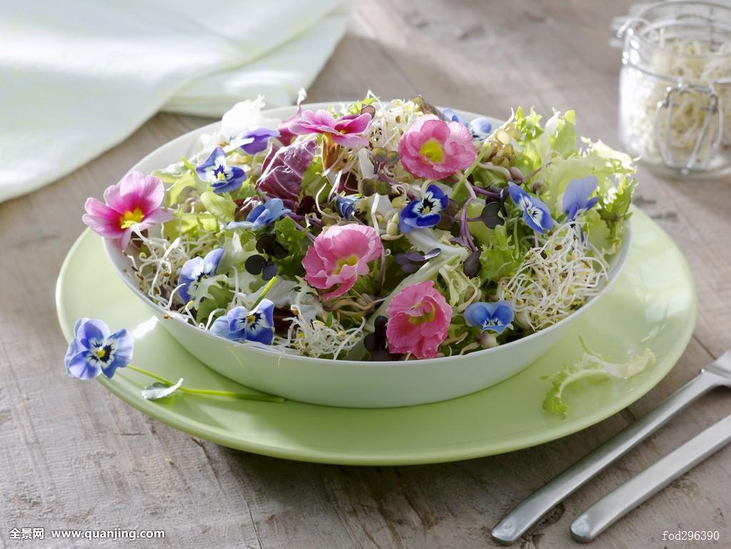 季节,春天,春季食品,春季沙拉,如春,芽,芽菜食品,豆芽沙拉,素菜,菜肴图片
