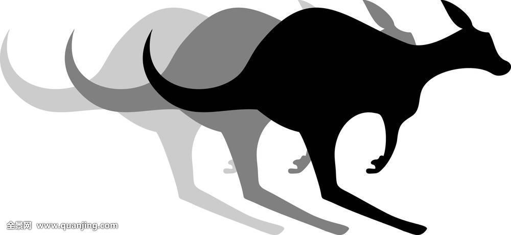 影子,视野,视觉,照看,跳跃,驰骋,移动,动物,澳大利亚,黑色,象征,徽章图片