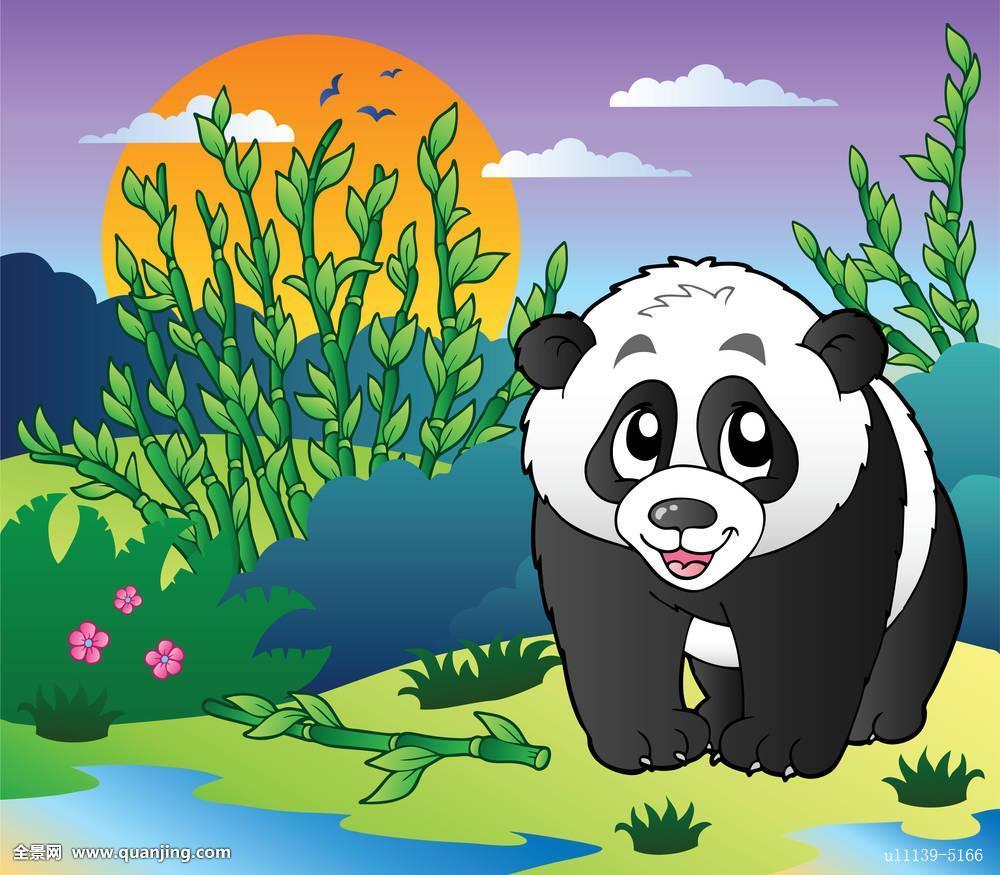 可爱,小,熊猫,竹林图片