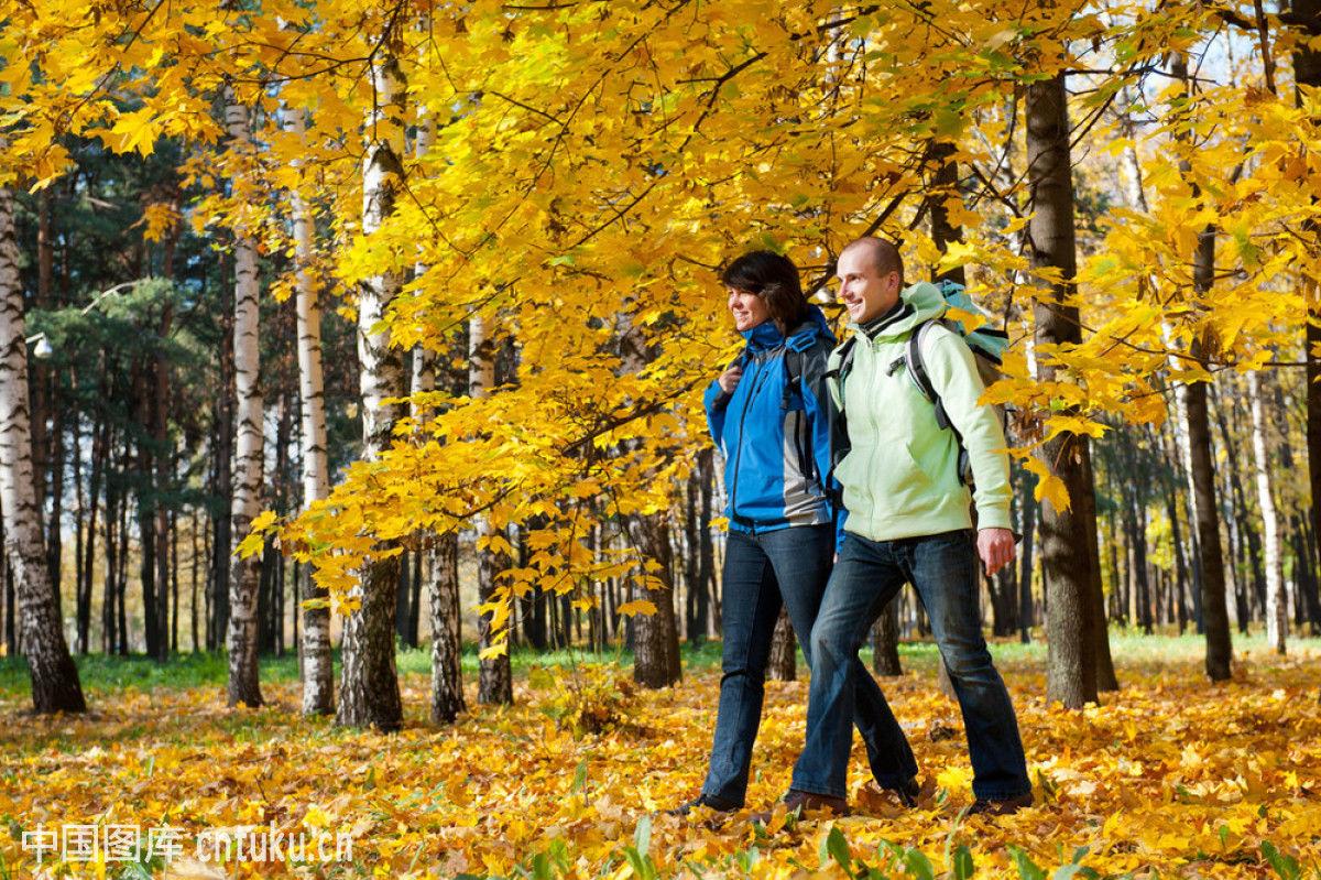 旅行,旅行者,冒险,男人,男性,女士,女性,人,森林,徒步旅行,小路,幸福图片