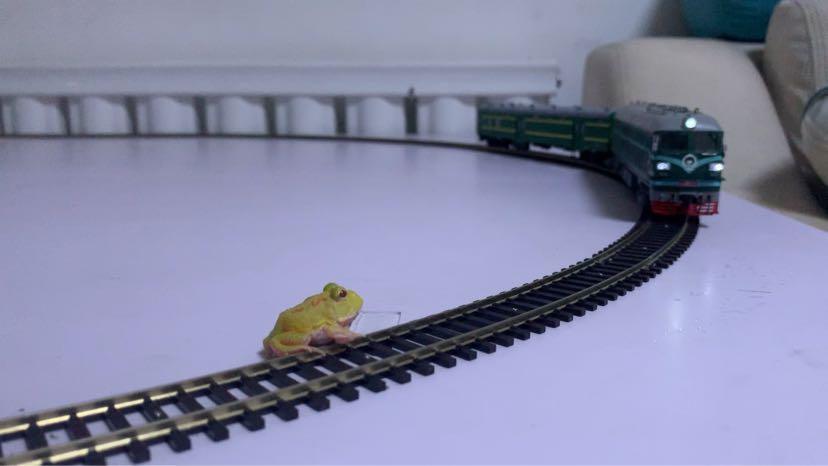 百万城火车模型视频_火车模型吧-百度贴吧--搭建火车模型和谐交流平台--弘扬铁路文化 ...