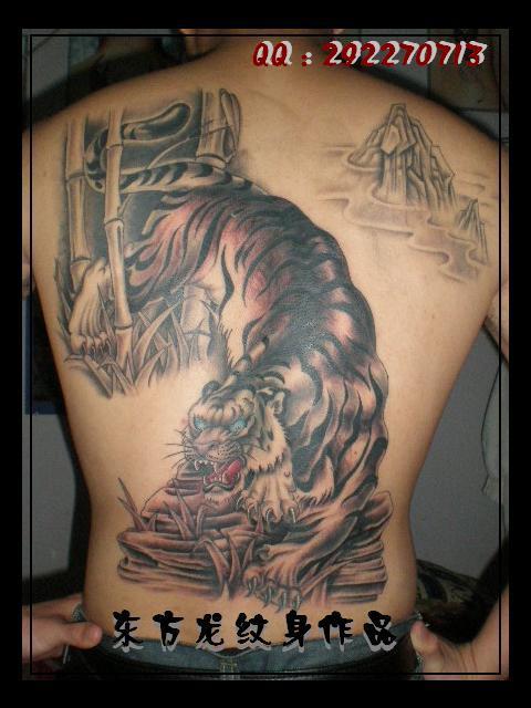 属兔的人纹身_属虎纹身的忌讳和讲究_属虎纹身的忌讳和讲究分享展示