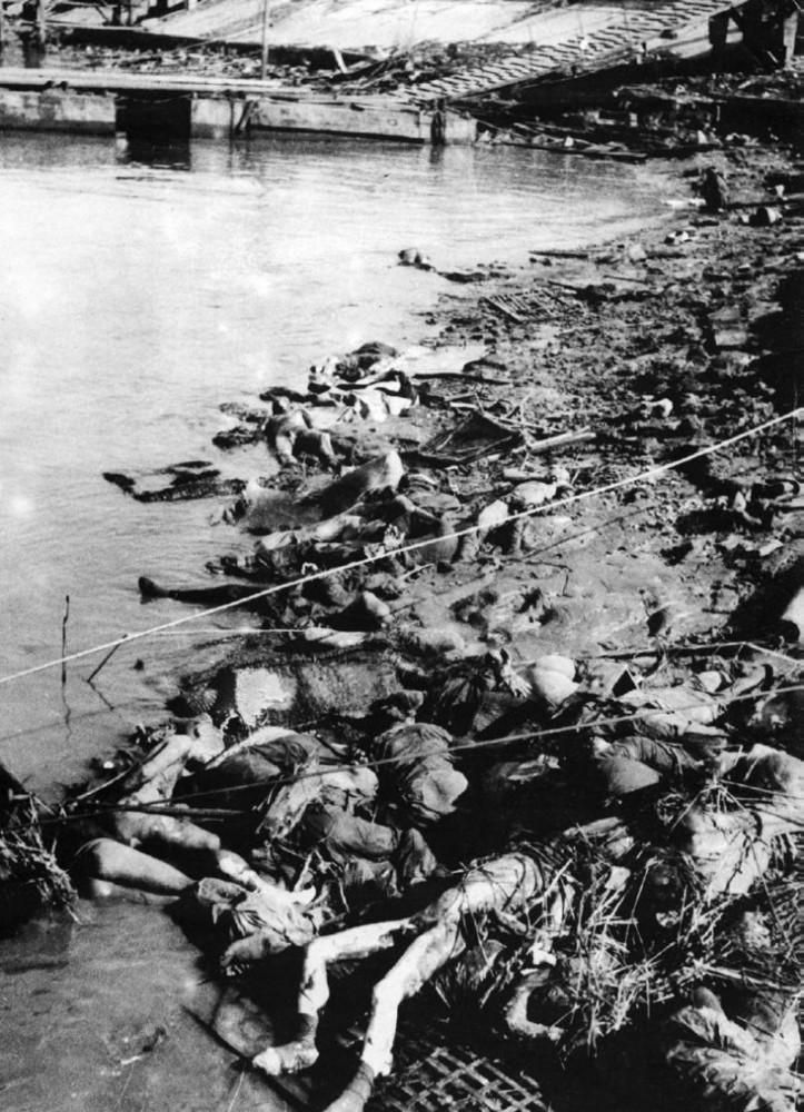 美女被日本杀害_日本兵不怕死,自愿剖腹自杀是骗人的!图片
