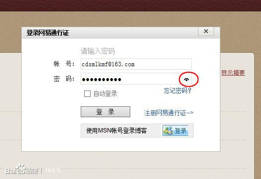 网易博客账号是什么_网易博客输入帐号密码的时候,密码栏里的小眼睛是什么?大家有吗 ...