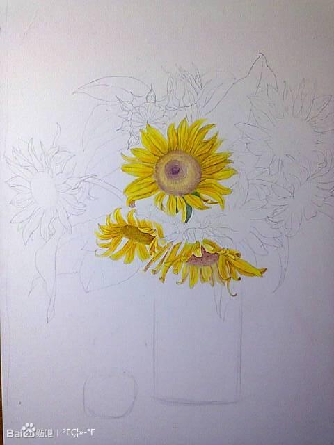 彩铅花_彩铅花卉_彩铅画吧_百度贴吧