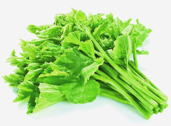 金针菜的别名_【图片】回复:潮汕常见蔬菜,你能叫出它的名字吗?_潮汕吧 ...