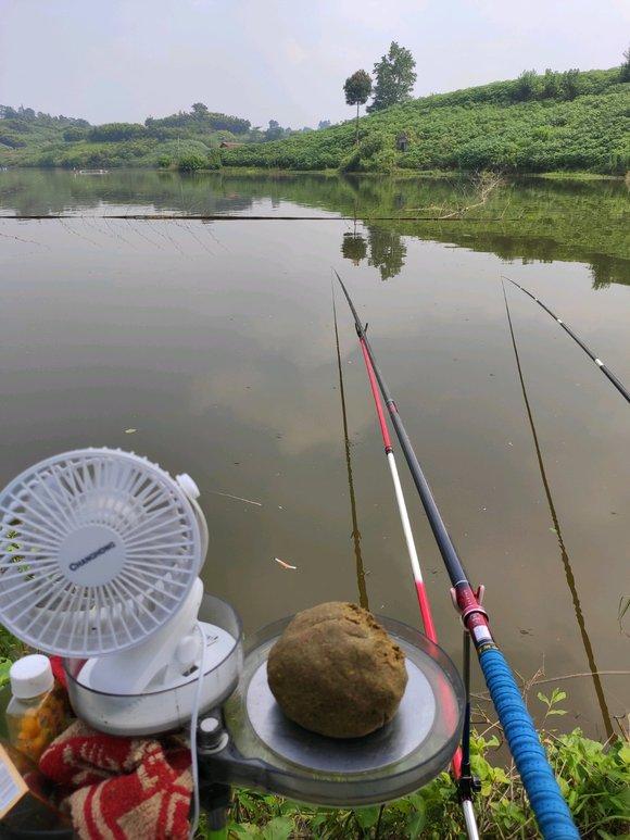 钓鱼吧_【图片】辞了职去钓鱼_钓鱼吧_百度贴吧