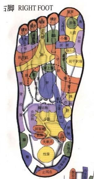 杨奕足底按摩穴位图_脚底穴位图——冬天泡脚,摁着部位有反射区_医疗资讯吧_百度贴吧