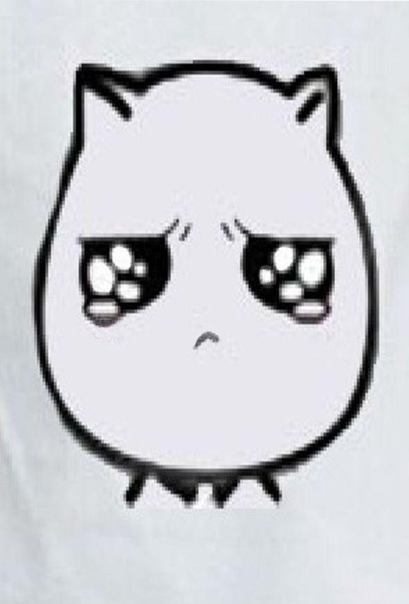 猥琐猫金馆长表情_猥琐猫表情包_猥琐猫表情包画法