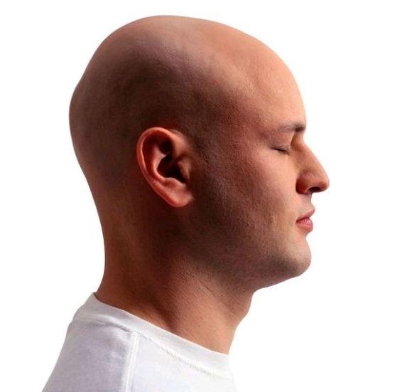 刘诗诗侧面_【图片】如何判断是否扁头(技术贴)_扁头吧_百度贴吧