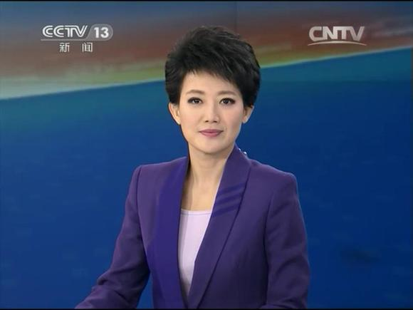 cctv13主持人紫凝_【午夜新闻】【新闻直播间】主播记录2015年1月_cctv