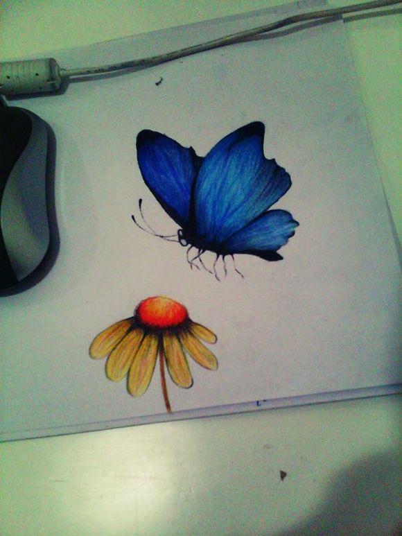 彩铅花_画只蝴蝶,实在是无语了。_彩铅画吧_百度贴吧