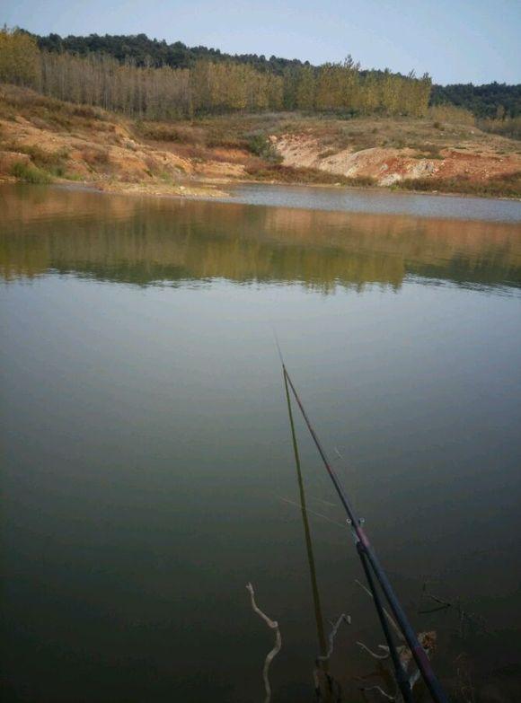 钓鱼吧_下午去守鲤鱼!【钓鱼吧】_百度贴吧