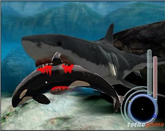 巨齿鲨吃虎鲸视频_猛兽大对决虎鲸vs白鲨-虎鲸vs大白鲨vs巨齿鲨|虎鲸vs大白鲨视频 ...
