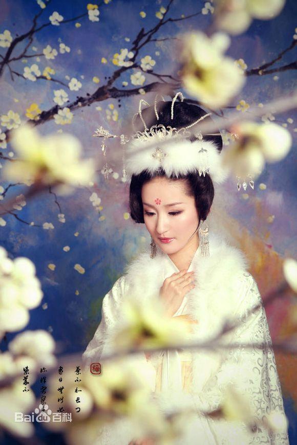 梅妃楼东赋_梅妃——江采萍