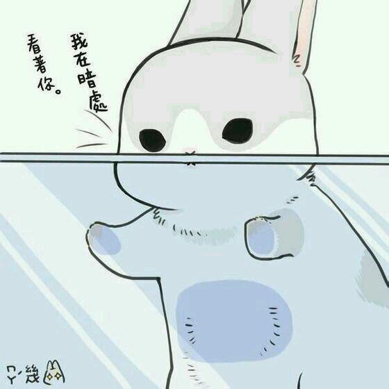 兔子表情包分享展示圖片