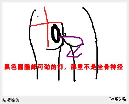 臀中肌和臀小肌的定位图片_