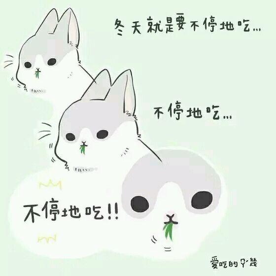 【破事水】有沒有人有這只兔子的表情包圖片