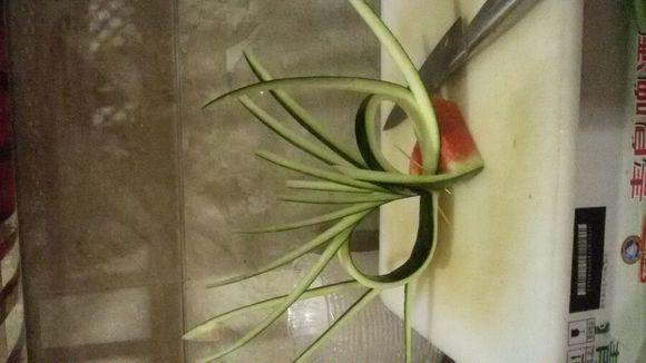 瓜皮拉花视频_西瓜皮水果拼盘图片_西瓜皮水果拼盘图片高清图片