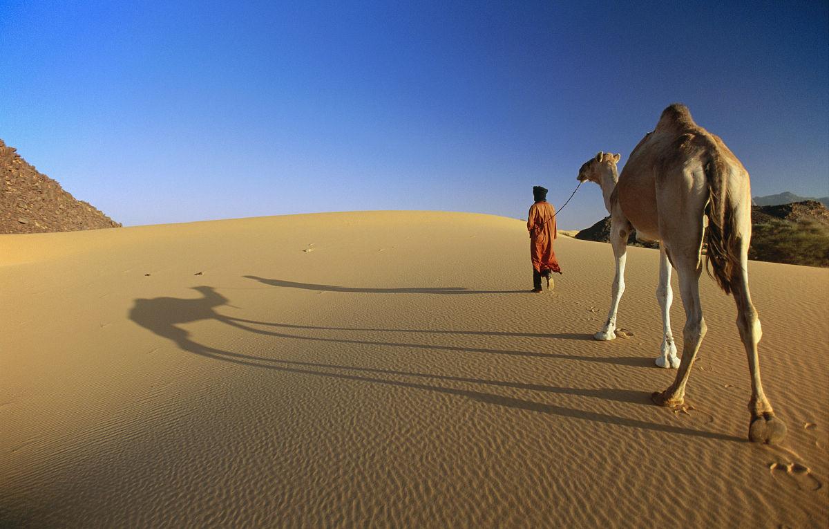 沙丘,撒哈拉沙漠,厄夫特城,一個人,貝多因人,彩色圖片,旅游,旅行,度假圖片