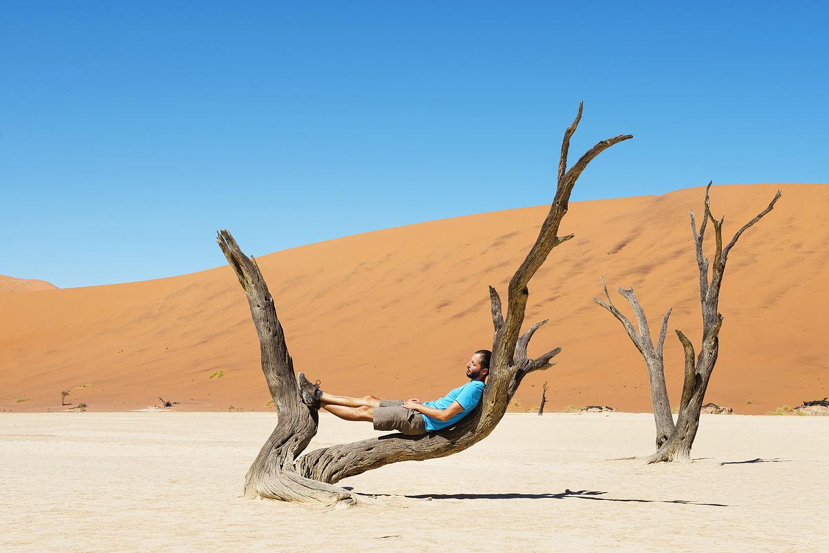 植物志,死亡的植物,僅一個中年男人,納米比亞國家公園,沙漠,植物,禿樹圖片
