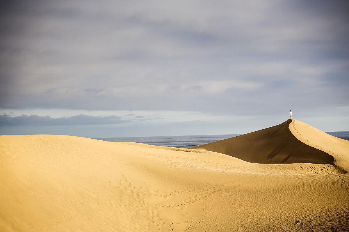 一個男人,自然美,透過窗戶往外看,沙漠,全身像,戶外,大西洋群島,旅行圖片