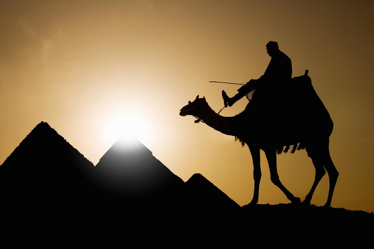 僅中老年男人,僅一個中老年男人,僅男人,僅一個男人,勞作動物,旅行圖片