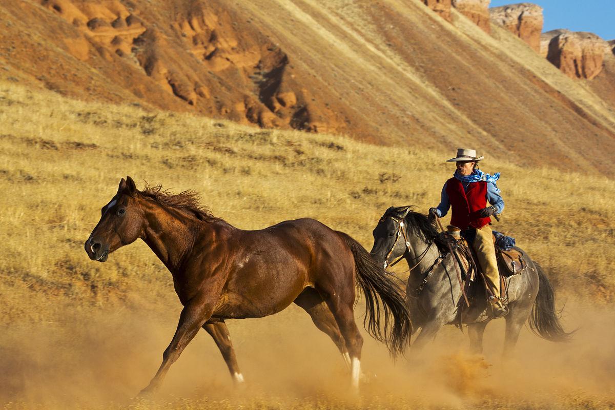 兽交爱爱网_兽交海娜与马