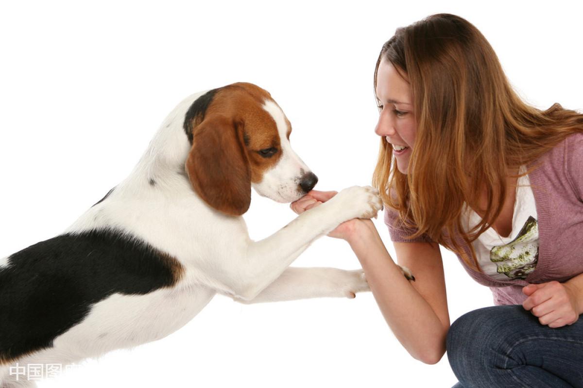 和少妇怎么做爱_少妇和狗的做爱经历