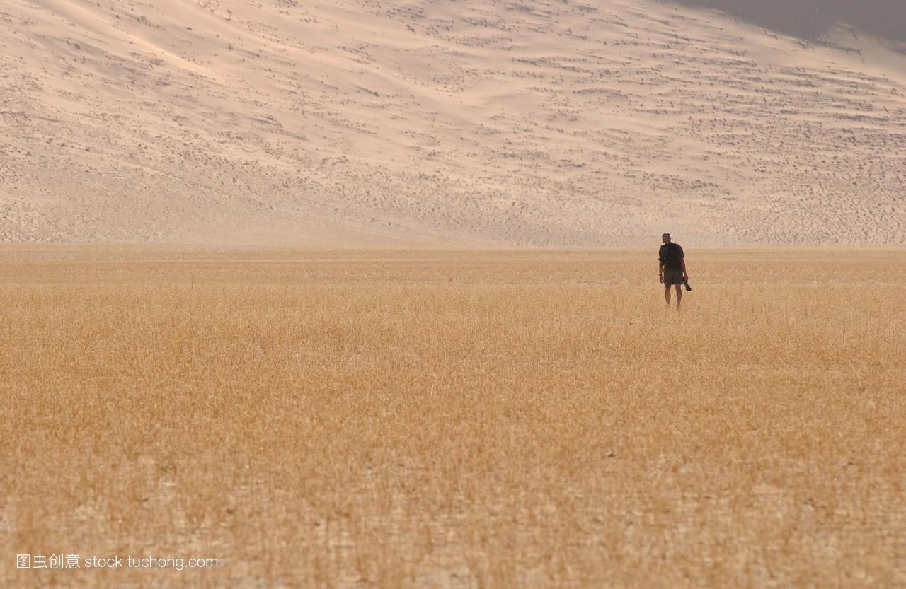 沙地,沙,沙灘,沙漠,沙子,沙丘,水平線,游客,一,獨立,一個,獨居,一個人圖片