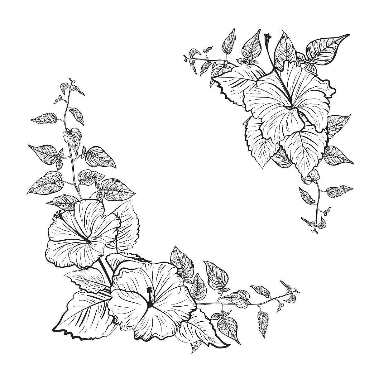 xongjiaodetupian_梅花边框图片梅花图片素描图片