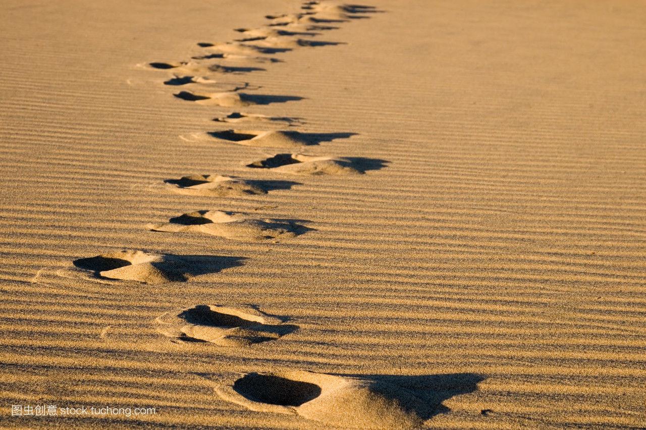 假期,假日,道路,發現,冒險,天然,一個人,孤單,失去,孤獨,孤立,大自然圖片