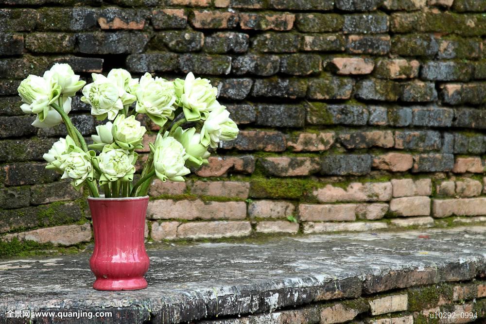 泰国人彘表演_泰国花瓶人彘图片-人彘花瓶是怎么做的-国外真有人彘观赏吗 ...