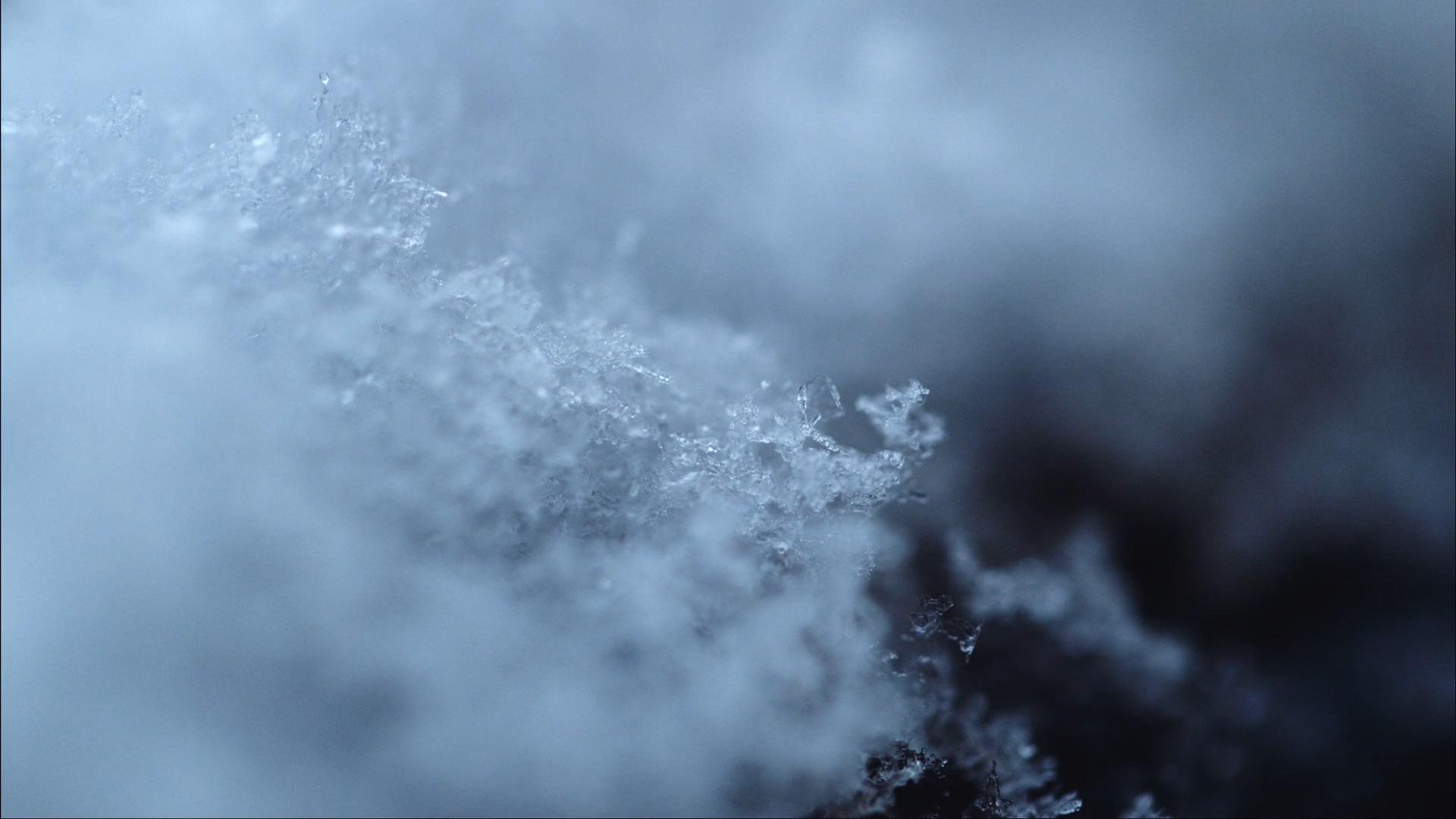 2019 第一场雪